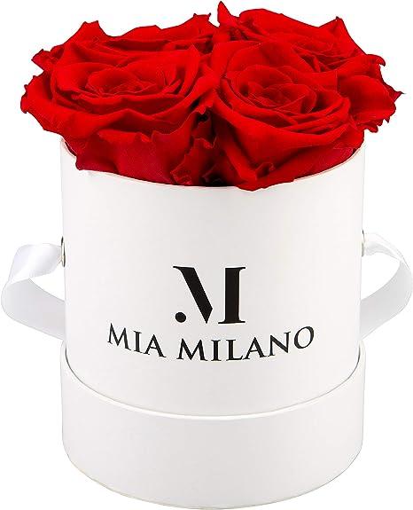 Imagen deMia Milano ® Caja de rosas con 4 rosas Infinity | Flowerbox (caja de regalo para el día de San Valentín) flores conservadas 3 años de duración (Blanco - Rojo)