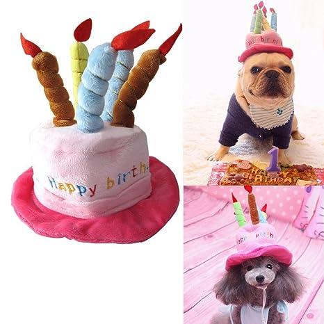catyou Adorable gato perro de mascota feliz cumpleaños gorro de fiesta con pastel y 5 diseño ...