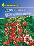 Tomatensamen - Tomate Picolino ( Cocktailtomate ) von Kiepenkerl