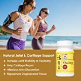 Joint Health Supplement Capsules, Natural Chinese