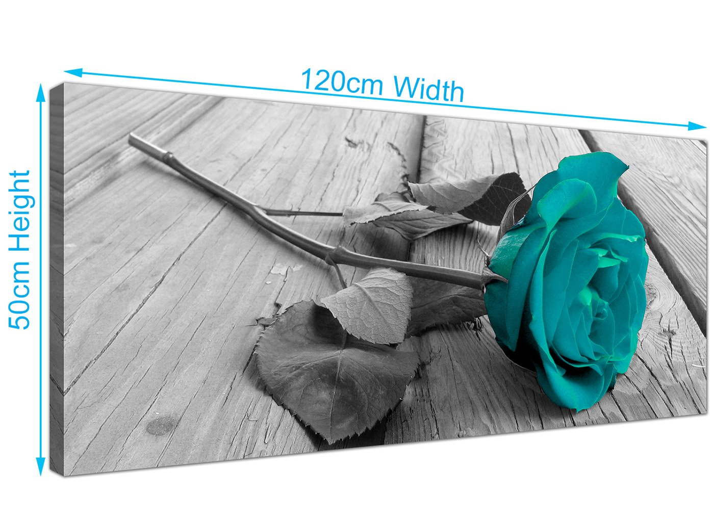 Wallfillers Modern Black And White Canvas Wall Art Of A Teal Rose