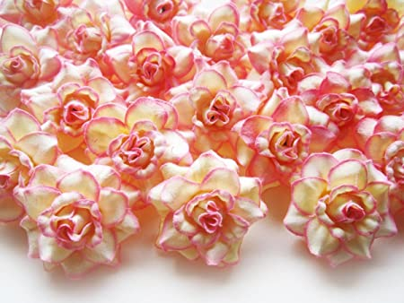 (100) Cream Pink Edge Roses Silk Flower Head - 1.75