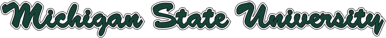 , 2 Spartan Head 2-Pack Deca 2 Craftique Michigan State Decal
