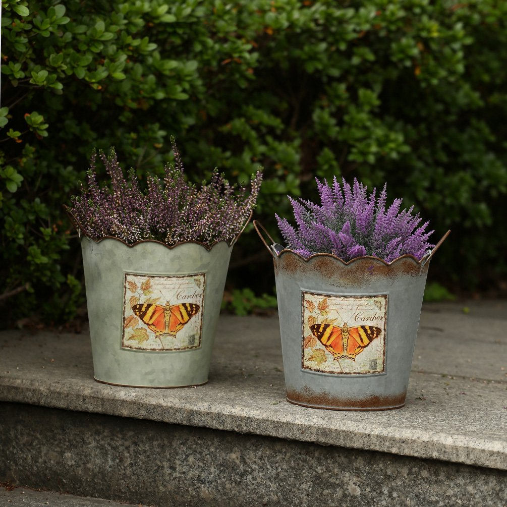 Metal Planter Pails with Butterfly labels available at AMAZON