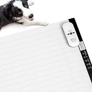 SVD.PET Pet Training Mat, 30