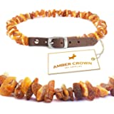 Baltic Amber Collar with Adjustable Leather Strap for Dogs and Cats / Natural Pet Protection / Gift-Ready Packaging – Perfect Present for Every Pet Lover / 100 Days 100% Satisfaction Guarantee!