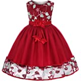 Girls Dress Party Dress for Girls Knee Length Cute Princess Dress Christmas Holiday Dress