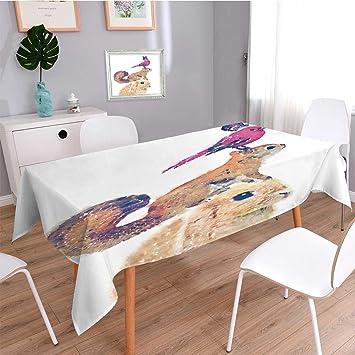 Scocici1588 Tischdecke, Bedruckt,, Illustration Kaninchen Rot Eichhörnchen  Watercolor Bird Butterfly Illustration T