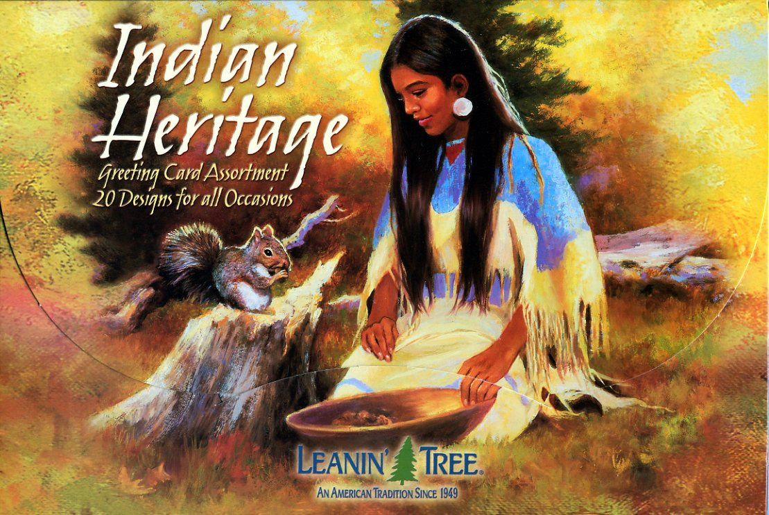 Amazon Indian Heritage Value Pack Greeting Card Assortment Of