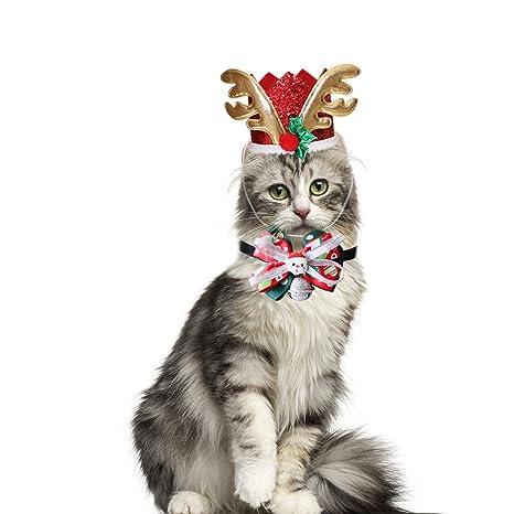 RYPET Disfraz de Gato – Disfraz Personalizado para Mascotas para Perros pequeños Gatos Halloween Fiesta de