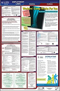 "2020 Florida Labor Law Poster, All-in-One OSHA Compliant FL State & Federal Laminated Poster (26"" x 40"" English) for Workplace Compliance - Includes FFCRA Poster - J. J. Keller & Associates"