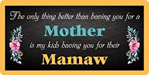 """StickerPirate 111HS The Only Thing Better Than Having You for A Mother is My Kids Having You for Their Mamaw 5""""x10"""" Aluminum Hanging Novelty Sign"""
