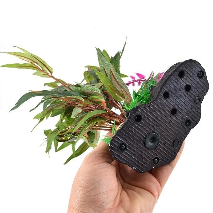 Amazon.com : eDealMax acuario de plástico plantas del tanque de pescados de la decoración del ornamento Hojas Base de cerámica : Pet Supplies