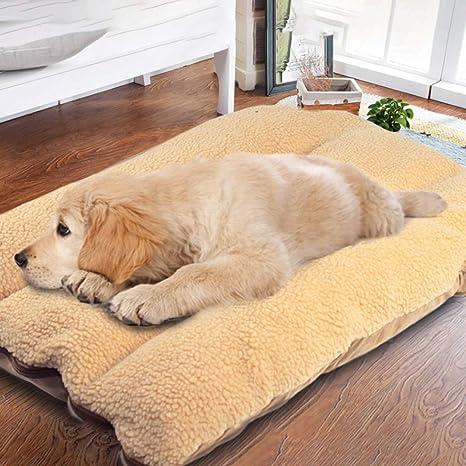 Authda Almohadillas para Perro Grandes Lavables cómodas Desmontables Antideslizantes con Cordero de Cachemira Extra Suave para