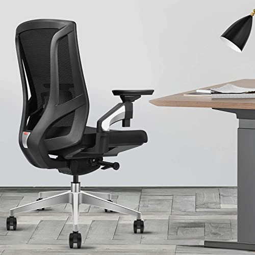 MIISLAIN Ergonomic Mesh Office Chair