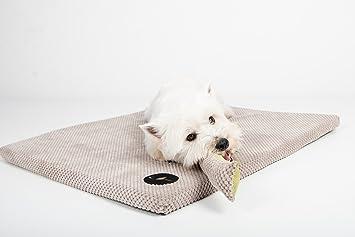 Lauren Diseño Perro Mascota Gato Cama Unterlage Demi 50 cm x 40 cm Beige: Amazon.es: Productos para mascotas