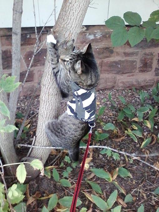 Arnés para gatos, de Mynwood, con diseño de camuflaje polar, para adultos,