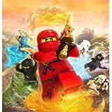 Lego Ninjago (24inch x 25inch / 60cm x 63cm) Silk Print Poster - Soie Affiche - 371585