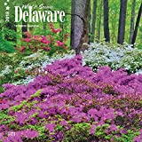 Delaware, Wild & Scenic 2018 12 x 12 Inch Monthly Square Wall Calendar, USA United States of America Southeast State Nature