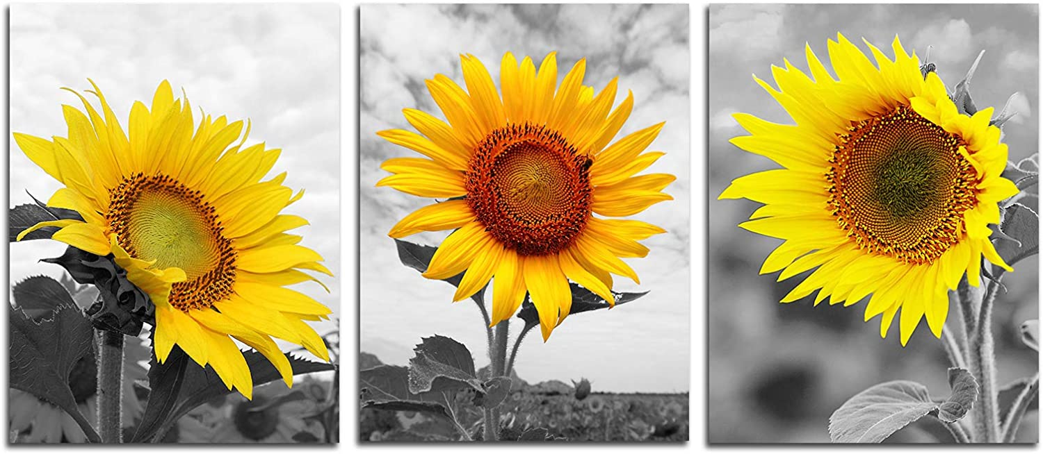 Sunflower Wall Art Pictures Decor - Yellow Flower Posters Prints Bathroom Wall Painting Home Office Modern Decoration Nature Canvas Farmhouse Pictures Women Gifts Unframed 12x16inches 3 panels
