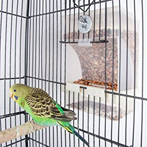 Old Tjikko Parrot Automatic Feeder,No-Mess Bird Feeder,Cage Accessories for Budgerigar Canary Cockatiel Finch Parakeet Seed Food Container