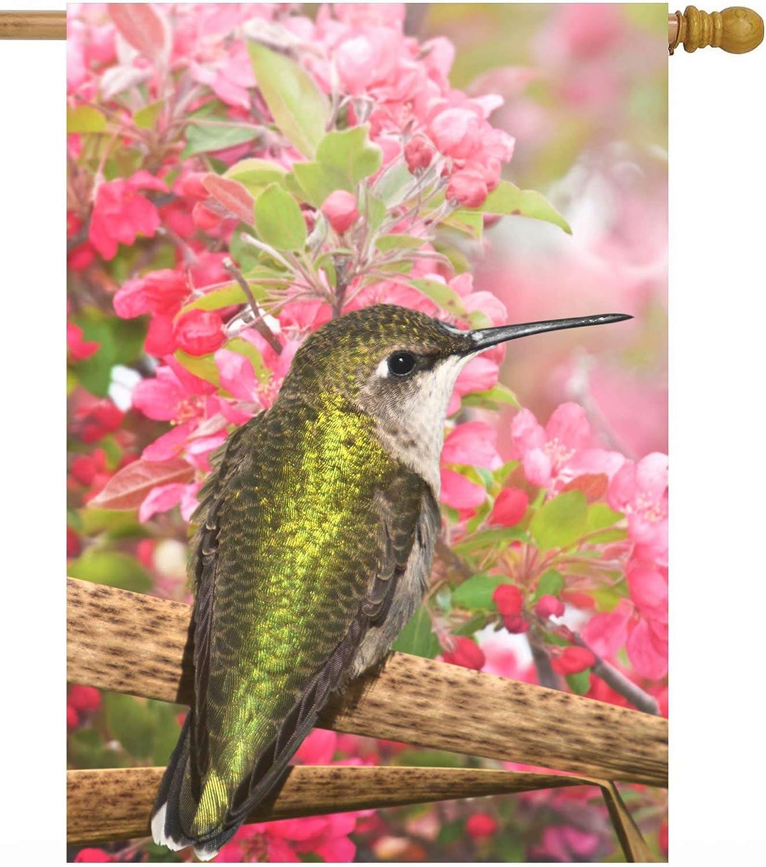 ShineSnow Spring Summer Hummingbird Bird Pink Floral Apple Flowers House Flag 28