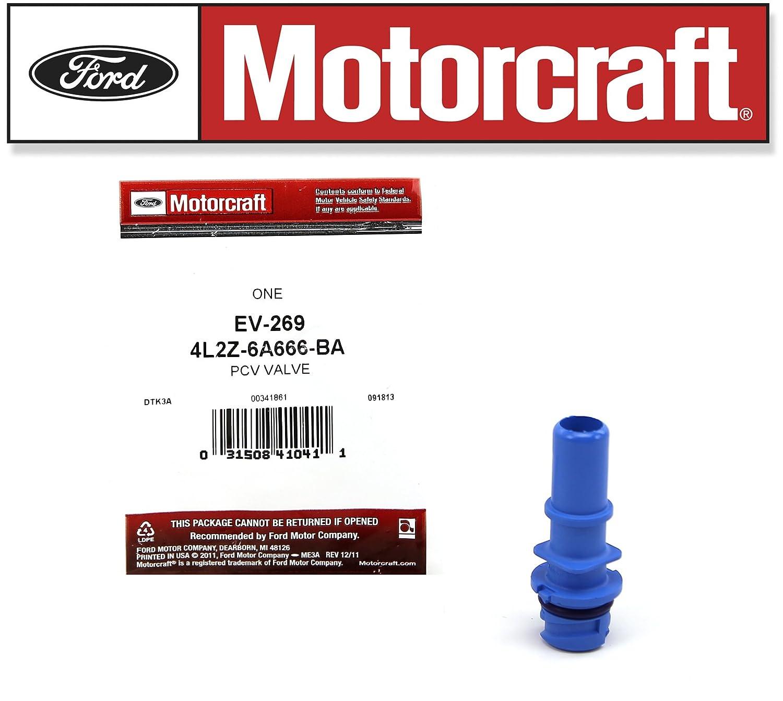 Amazon.com: TUNE UP KIT 2004 F150 V8 5.4L HEAVY DUTY IGNITION COIL DG508: Automotive