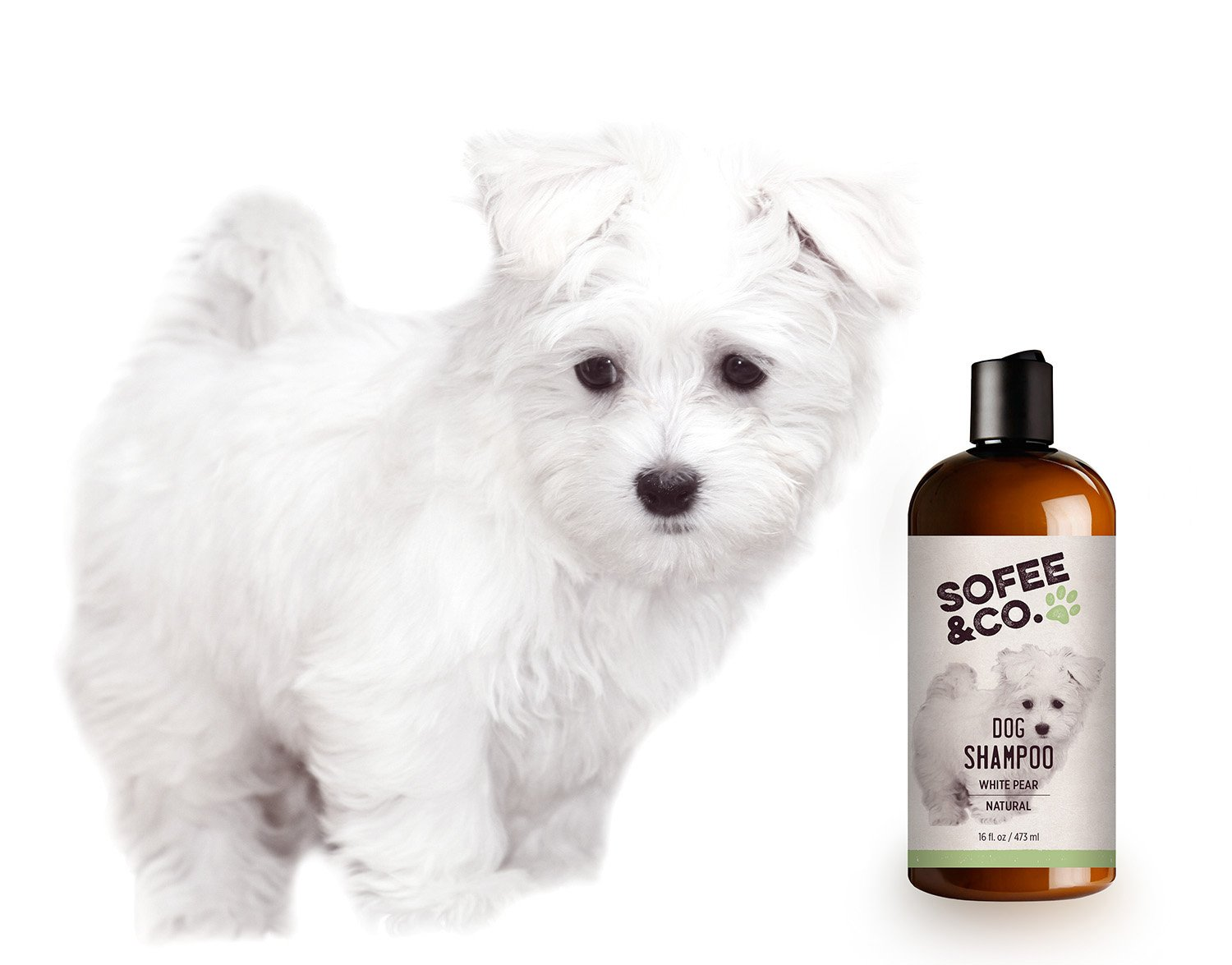 Sofee & Co. Natural Dog/Puppy Shampoo, White Pear - Clean, Moisturize, Deodorize, Detangle, Calm, Soothe, Soften, Normal, Dry, Itchy, Allergy, Sensitive Skin. Prevent Mattes. 16 oz by Sofee & Co. (Image #5)