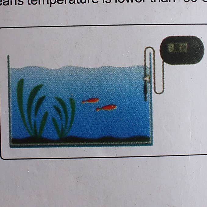 Amazon.com : eDealMax Termómetro Negro Pantalla LCD Digital tanque del acuario de temperatura del agua : Pet Supplies
