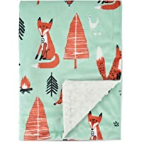 Boritar Fox Baby Blanket -Soft Minky with Double Layer Dotted Backing- Ultra Soft and Cute Kids Blanket for Toddler Bed, 30x40 Green