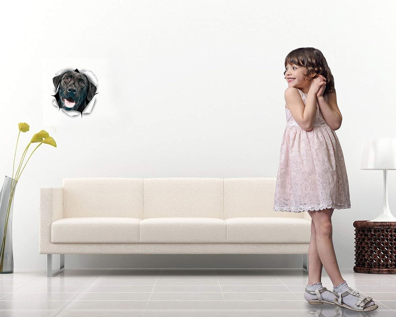 Adesivi Cani 3D Vendita al Dettaglio Bagno Frigorifero Camera Automobile 2 Confezioni Winston /& Bear Adesivi da Parete Cane Labrador Nero