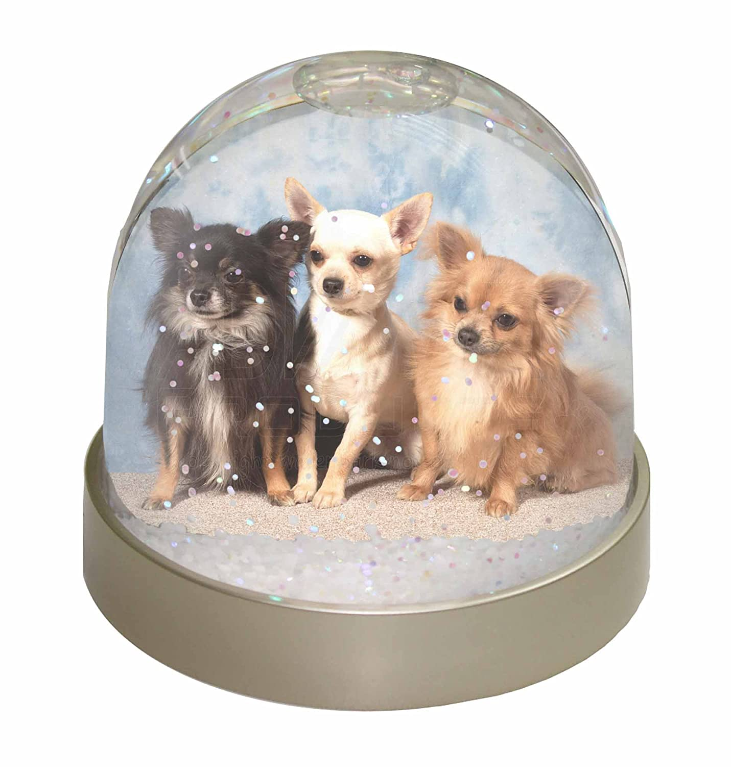 Advanta Chihuahua Snow Dome Globe Waterball Gift, Multi-Colour, 9.2 x 9.2 x 8 cm Advanta Products AD-CH1GL