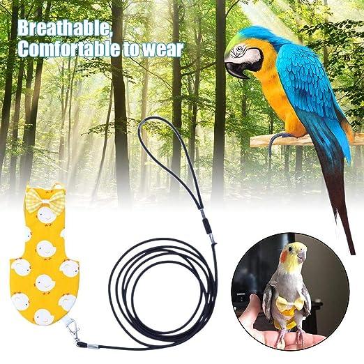 fervory Parrot Pañal Loro Pañal Pañal para Mascotas Ropa para ...