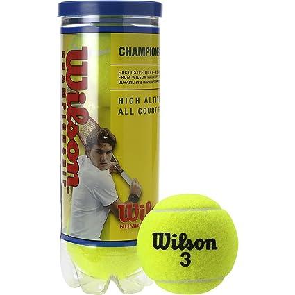 Amazon.com: Wilson Championship regular-duty high-altitude ...
