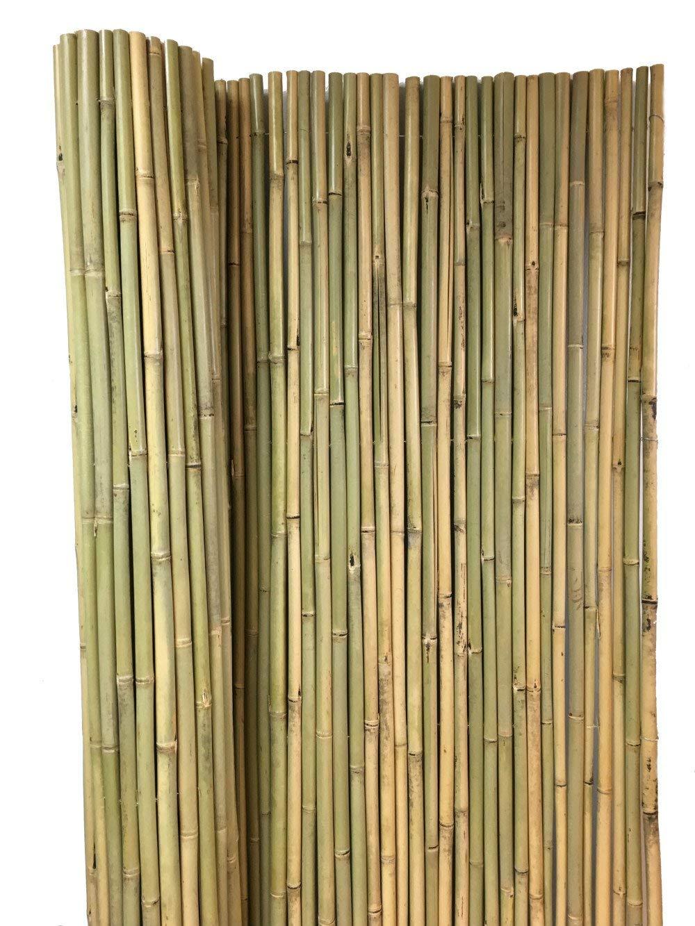 Tonkin Bamboo Fence, 3/4'' Diameter Poles, 8'L x 4'H, BWF-48