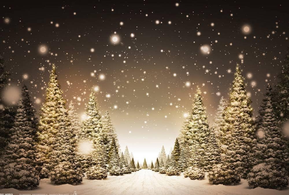 FHYGJD Christmas P Art Print Canvas Poster,Home Wall Decor(28x42 inch)