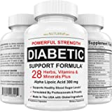 Diabetic Support Supplement - 28 Vitamins Minerals & Herbs with 300 mg Alpha Lipoic Acid Formula for Blood Sugar & Extra Ener