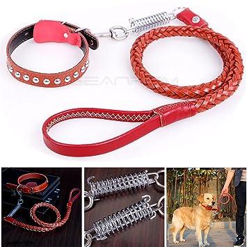 Leder Leine Für Hunde Mit Verstellbarem Halsband U0026 Sicherheit Spring,  Geschirr Set, Strapazierfähig