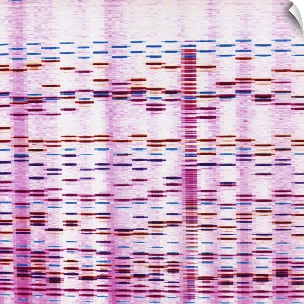 CANVAS ON DEMAND DNA Sequence Wall Peel Art Print, 48''x48''