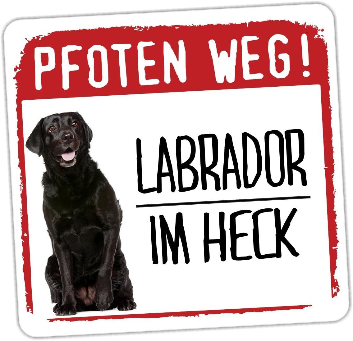 Black Lab Labrador Pfoten Weg Siviwonder Auto Aufkleber Hundeaufkleber Reflektierend Auto