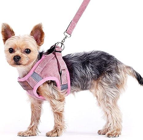 Elinala Arnés Perro Pequeño, Arnes Perro Chihuahua, Arnés Transpirable y Cómodo para Perros y Gatos para Mascotas, Cinturones de Seguridad para ...