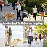 Tifereth Dog Leashes for Medium and Large Dogs