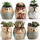SUN-E 6 In Set 2.5 Inch Owl Pot Ceramic Flowing Glaze Base Serial Set Succulent Plant Pot Cactus Plant Pot Flower Pot Container Planter Bonsai Pots With A Hole