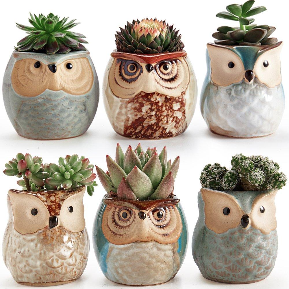 Sun-E 2.5 inch Owl Pot Ceramic Flowing Glaze Base Serial Set Succulent Plant Pot Cactus Plant Pot Flower Pot Container Planter Bonsai Pots with A Hole Perfect Gift Idea 6 in Set by SUN-E