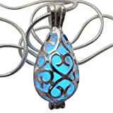 Amazon Price History for:Wishing Teardrop Fairy Magical Fairy Glow in the Dark Necklace-blue-sil