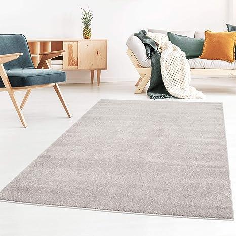 Taracarpet Kurzflor-Designer Uni Teppich extra weich fürs Wohnzimmer,  Schlafzimmer, Esszimmer oder Kinderzimmer Gala grau 040x060 cm