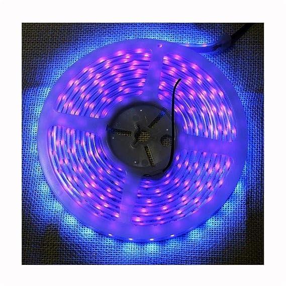 Review Super Waterproof UV Lights