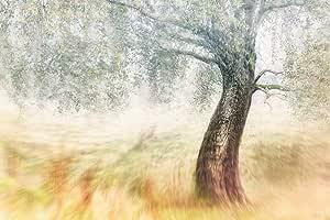 لوحة مطبوعة مع اطار تحاكي المناظر الطبيعية - قياس 67 سم X 100 سم