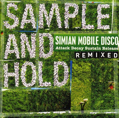 Sample And Hold - Attack Decay Sustain Release Remixed by Wichita
