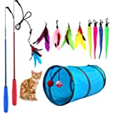 M JJYPET Retractable Cat Toy Wand, 12 Packs Interactive Cat Feather Toys, 9 Assorted Teaser Refills with Bell for Cat Kitten